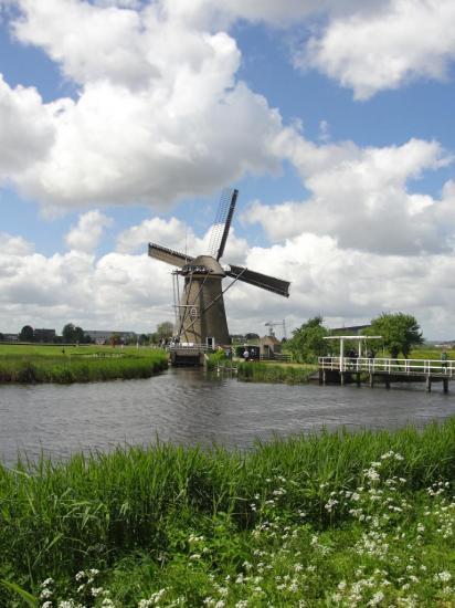 15-Kinderdijk