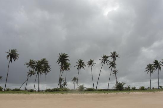 Une plage du Brésil