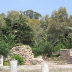 Carthage (Tunisie)
