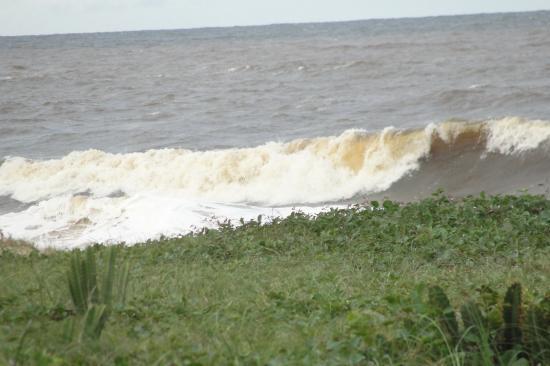 La marée montante (Brésil)